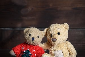 two brown soft teddy bears