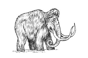Big mammoth. Extinct animal