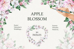 Apple Blossom Watercolor Set