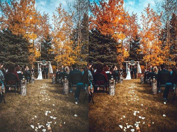 Скачать [Creativemarket] 25 Wedding Photoshop Actions (2019), Отзывы Складчик » Архив Складчин