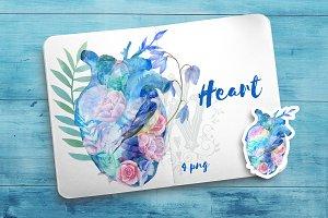 Watercolor floral anatomy heart