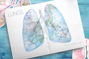 Watercolor human lungs
