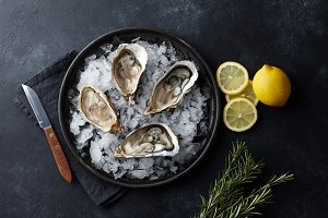 Fresh oysters in a plate with ice on