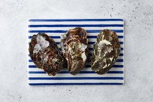 Fresh closed oyster shells on stripe