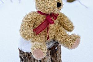 soft toy bear sitting on a stump