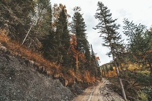Autumn hills and the earthroad