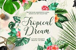 Tropical Dream-watercolor set