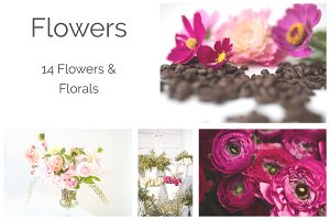 Flowers | Styled Stock Photos