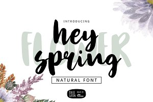 Hey Spring Brush Font