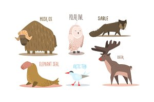 Collection of Arctic animals with