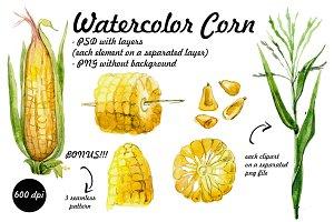 watercolor corn