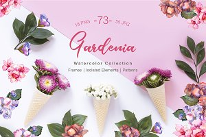 Gardenia Watercolor png