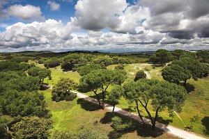Park of Madrid