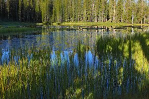 The superficial dark blue lake