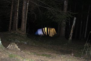tent in a forest at night