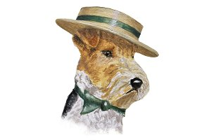 Fox Terrier Dog Wearing Boater Hat