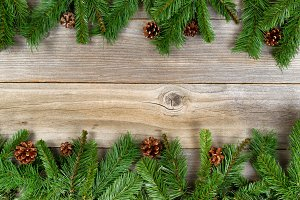 Holiday branches on wood