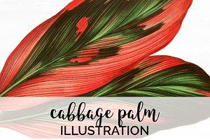 Palm Leaves Cabbage Vintage Leaf