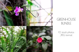 Green leaves and flowers BUNDLE
