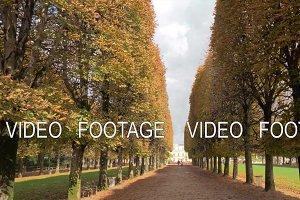 Autumn scene of tree lined promenade