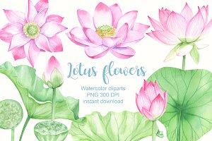 Watercolor lotus clipart