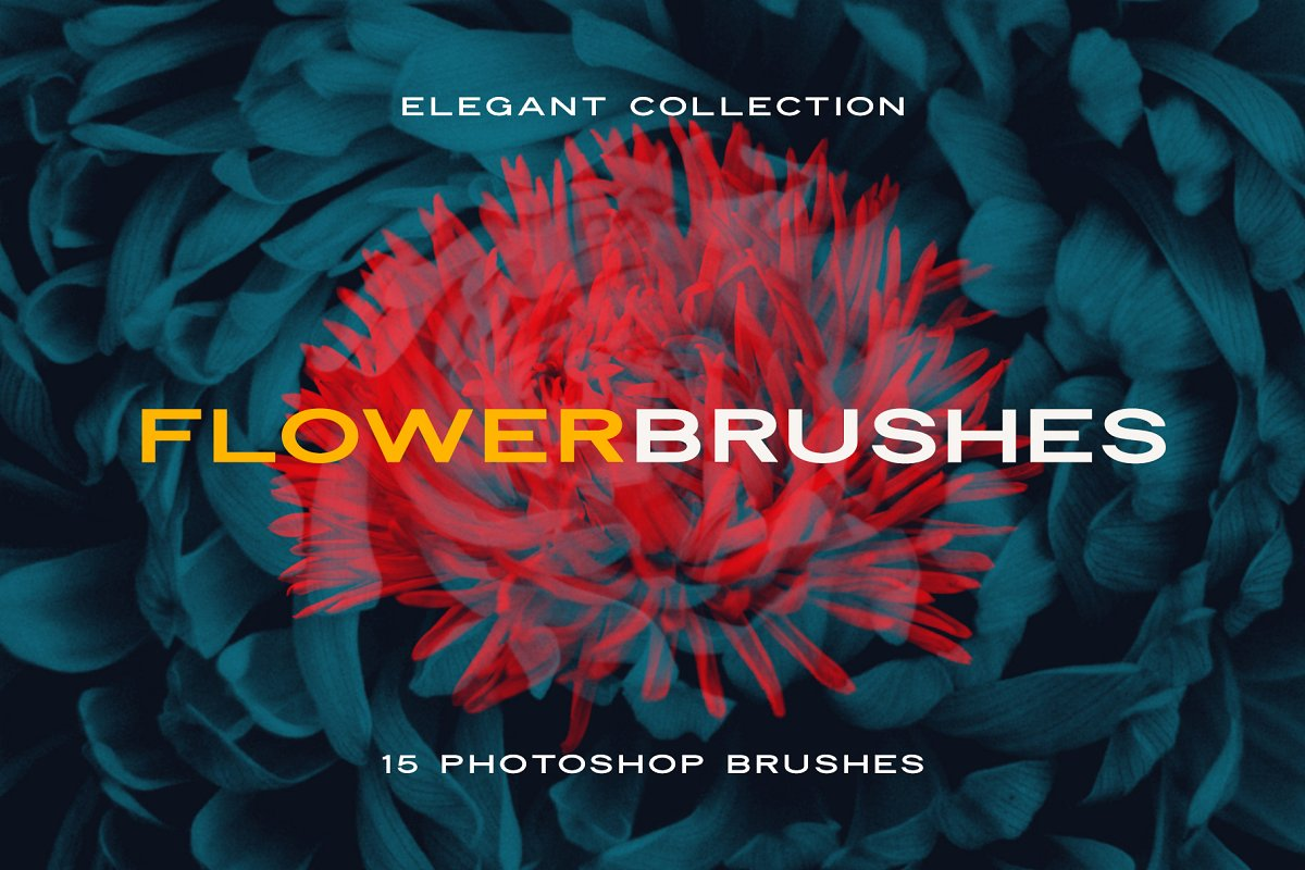 Elegant Flower Brushes for Photoshop ~ Photoshop Add-Ons ~ Creative