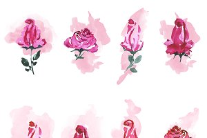 Watercolor roses background