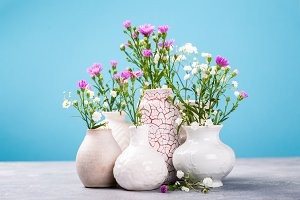 Vaseы with beautiful flowers on