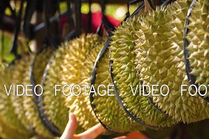 durians in the market