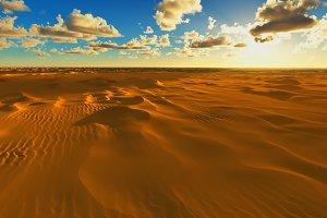 Africa desert 3d rendering design el