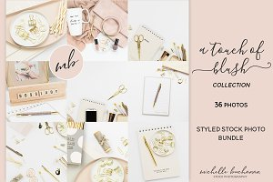 A Touch of Blush Photo Bundle
