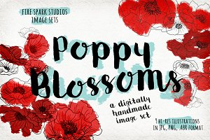 Poppy Blossoms Illustrations