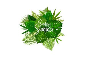 Sunny summer tropical leaves