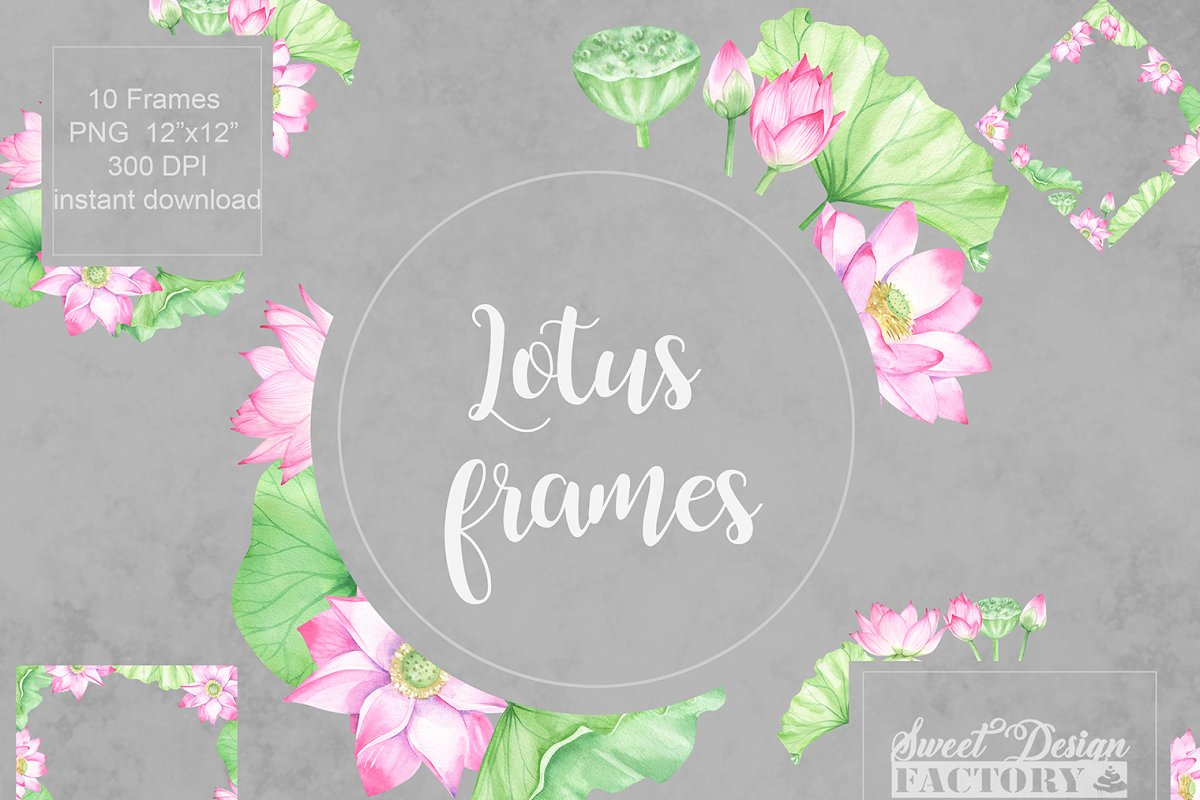 Watercolor Lotus Flowers Frames Illustrations Creative Market