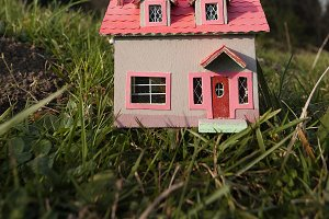 Playhouse on the field