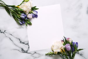 Blank card with plants. Mockup.
