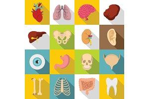 Human organs icons set, flat style