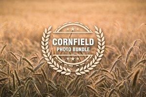 Cornfield Photo Bundle