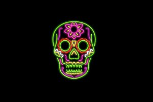 Sugar Skull Neon Sign 2D Animation