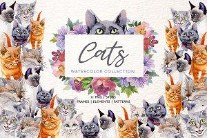 Cats Watercolor png