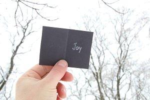 Joy idea, hand holding a christmas