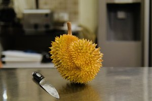 durian on the kitchen table