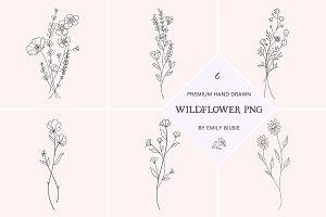 PSD 6 Hand Drawn Wildflower Elements