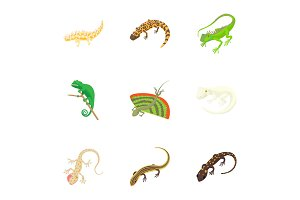 Iguana icons set, cartoon style