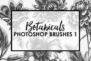 Botanical Photoshop Brushes 1