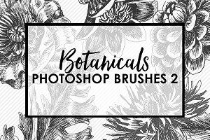 Botanical Photoshop Brushes 2