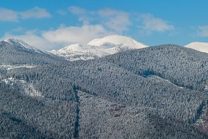 Winter snowy Carpathian mountains, U