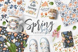 Spring - vector collection