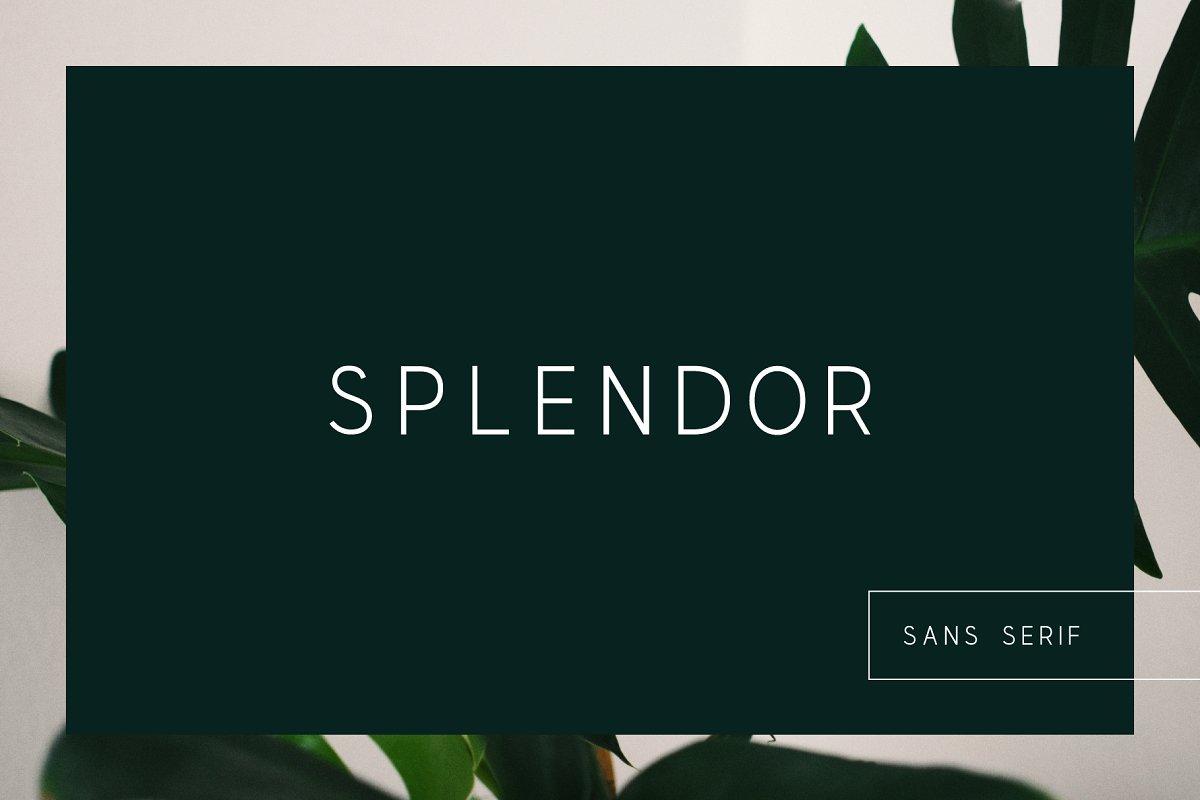 SPLENDOR - modern display font