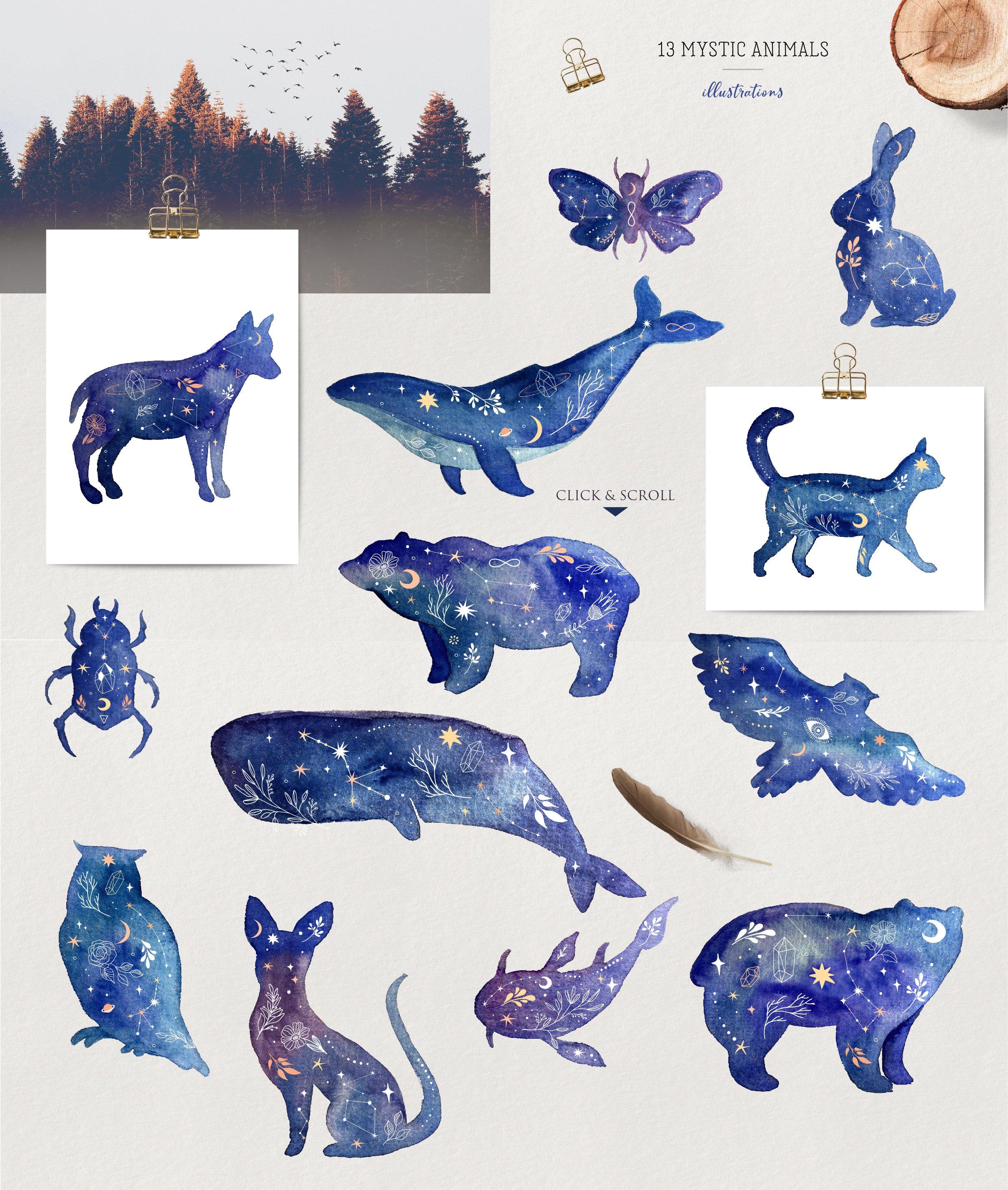 mystic animals 02 4